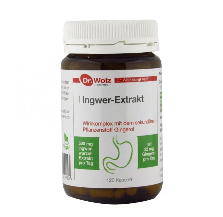 Ingwer-Extrakt, 120St