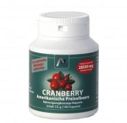 Cranberry Kapseln 100Stk